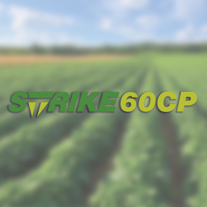 Strike 60 TriCal Australia