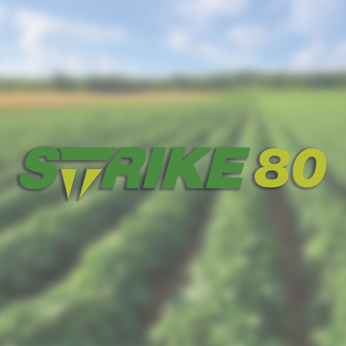 Strike 80 Product